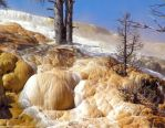 Orange Mammoth Springs by MissNysha