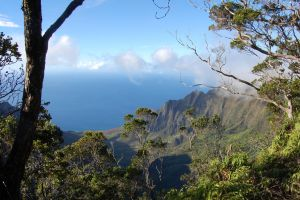Kalalau Valley from the Alaka'i  I by Forest-Imp