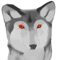 Wolf for Isnaria by skitty2