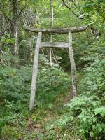 Rustic Torii by katters