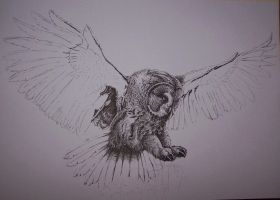 Great grey owl WIP by Concini
