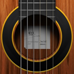 Guitar icon by hbielen