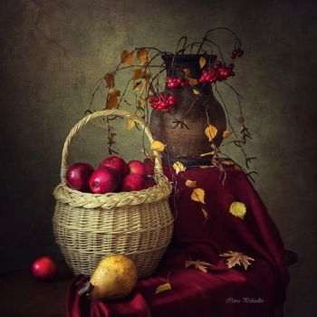 Still life in autumn colors by Daykiney