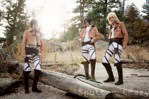 Attack on Titan - Into the Light by shutter-crazy