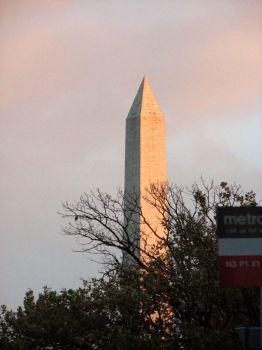 Washington Monument by Mama-cat