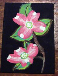 Dogwood Flowers for Turtlefair by mintdawn