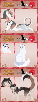 DotW: July MSE - Cats! by Quaylak