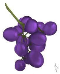 Grapes by Amzypop