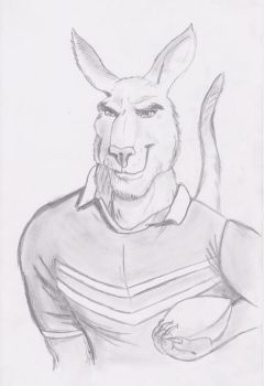 Rugby Kangaroo by JasonW129