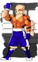 Boxing Arcanine (Boxing shorts version) by GenshiTatsunora