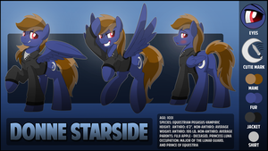 Donne Starside Character Sheet by artwork-tee