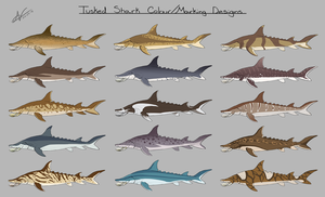 Tusked Shark: Colour/Marking Designs by Atropicus