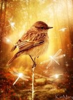 Birdy in enchanted forest by katmary