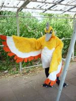 Shiny Ho-Oh Cosplay - Connichi 2012 by Senria-chan