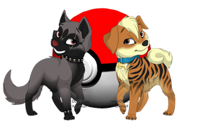 Poochyena and Growlithe