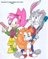 StC-Johnny,Tails and Amy by spongefox