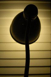 Lamp 12 by muratcopur