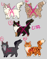 [2/5 OPEN] OTA Cat Adopts by Crywolf130
