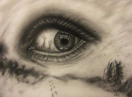 Surreal eye by 7CHIAROSCURO7