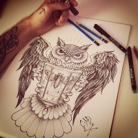 C x I x D Owl Wings by EdwardMiller