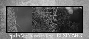 Spider Web by innocentLexys