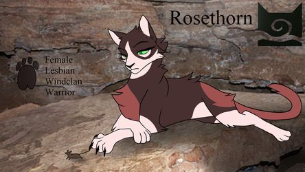 Rosethorn Reference Sheet by ChikkiArts
