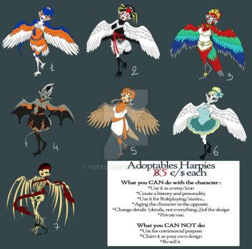 Adoptables Harpies OPEN by Yueyun