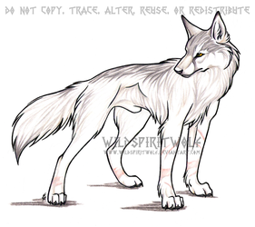 Se Lang Wolf Commission by WildSpiritWolf