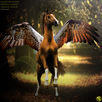 Wing-Premade by Charmed-Studios