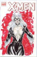 Black cat sktch cover by RyanMKincaid
