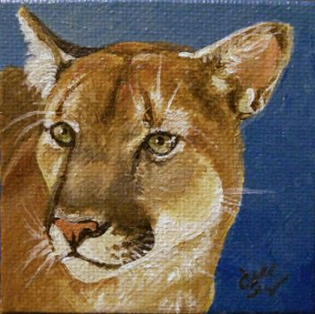 Cougar by Marbletoast