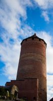 The Tower Of Turaida Castle by Mincingyoda