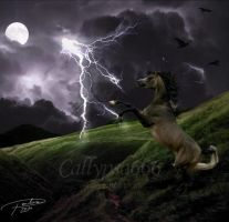 Raging storm by Callypso666
