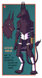 Accluo Character Sheet by Teslaverian