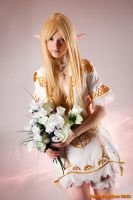 Lineage II Throne elf -majestic by Seranaide