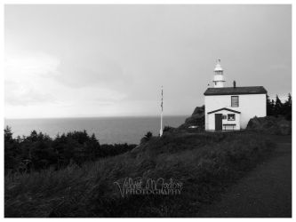 Lobster Head Cove Lighthouse by Velvet87