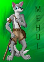 Mehul - wolven indian by WhiteRoo