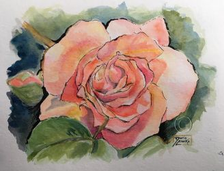 World Watercolor Month - Day 2 (Rose) by Harmony1965