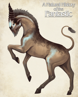 Unicorn- A Natural History of the Fantasic by Christopher-Stoll