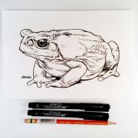 Inktober Day 8 - Toad by D-MAC