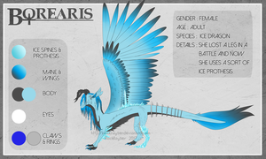 Borearis - Reference by BlackRayser