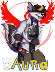 Commission: Trainer Aura by Blitzy-Arts