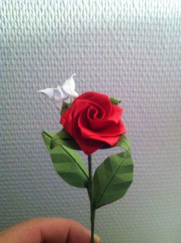 Origami rose by Haardod