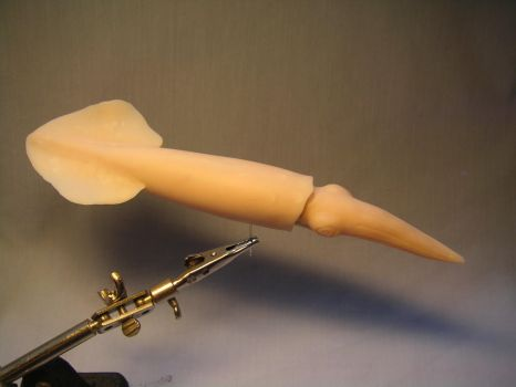 Belemnite model reconstruction, small version by Bestiarius