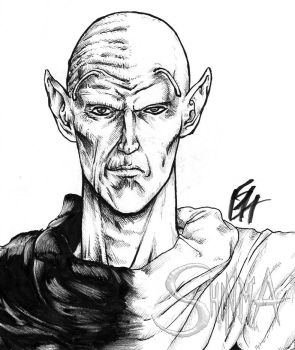 Live action Style:Kami-Piccolo by MatiasSoto