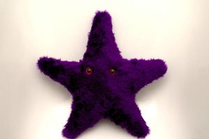 Purple Starfish by aCreature