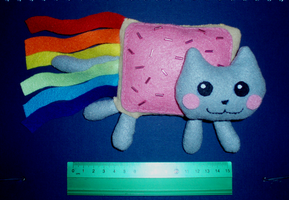 Nyan cat plush SOLD COMMISIONS OPEN by Ishtar-Creations