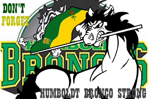 REST IN PEACE HUMBOLDT BRONCOS by SCR3-4-ME