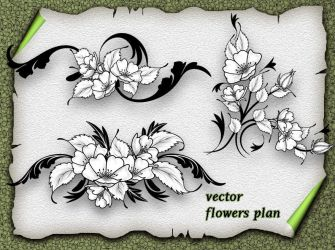 Vector Flower Plan by roula33