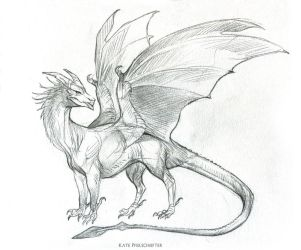 YiQi Dragon by KatePfeilschiefter